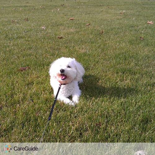 Pet Care Provider 's Profile Picture