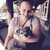 Dog Walker, Pet Sitter in Gig Harbor