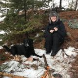 Sudbury Dog Trainer Available For Work in Ontario