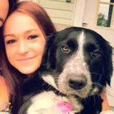 Dog Walker, Pet Sitter in Pittsfield