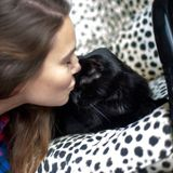 Outgoing, fun and humorous pet sitter!