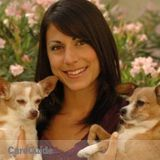 Professional Pet Sitter  Over 12 Years in Business!