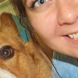 Bixby Dog Walker Looking For Work