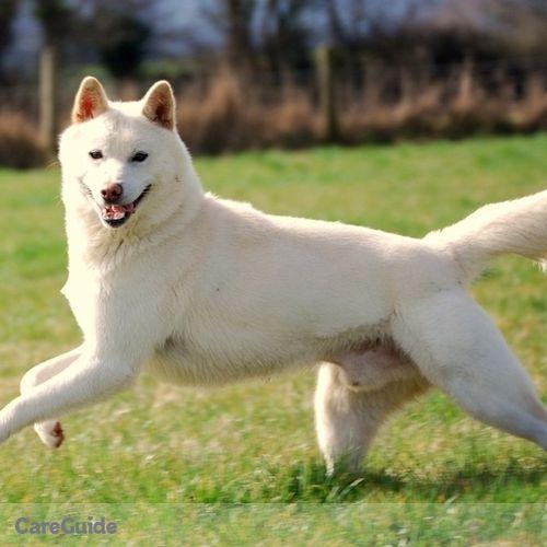 Pet Care Provider Michael Bianchi's Profile Picture