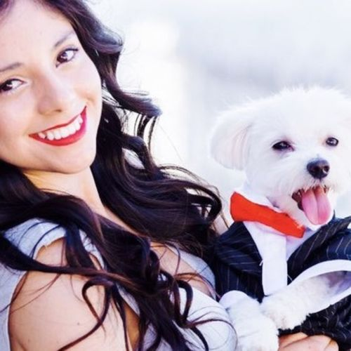 Pet Care Provider Elizabeth A's Profile Picture