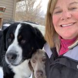 Colorado House Sitting (and pet) Professional Jobs