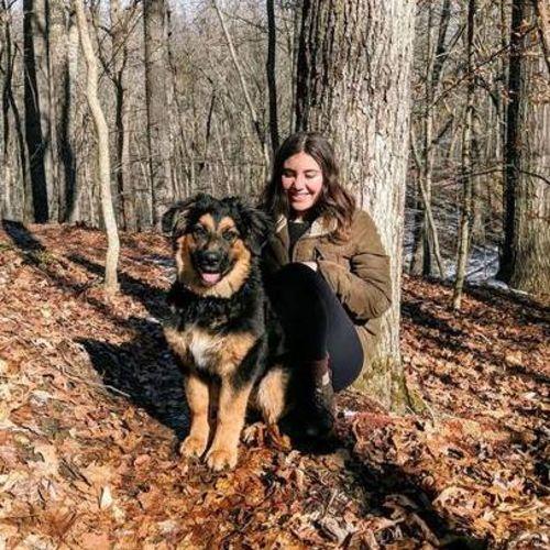 Pet Care Provider Rayanne P's Profile Picture