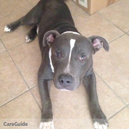 Pet Care Provider Lex Fancher's Profile Picture