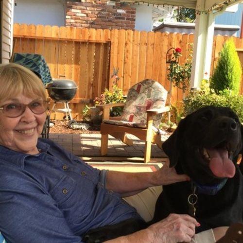 House Sitter Provider Caroline C's Profile Picture