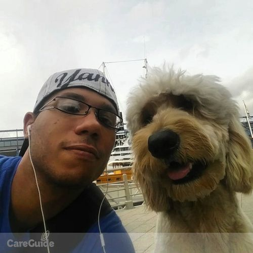 Pet Care Provider Leandro D's Profile Picture
