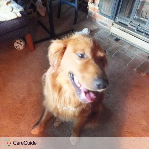 Pet Care Job Darlene Vaughan's Profile Picture