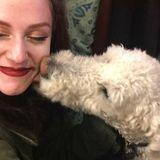 Passionate Pet Sitter/ Dog walker!