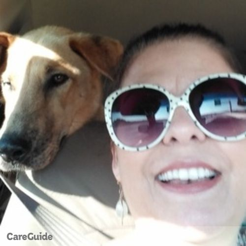 Pet Care Provider Nicole Lang's Profile Picture
