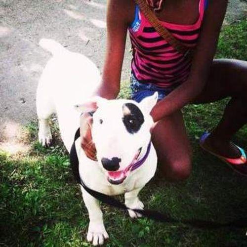 Pet Care Provider Davon J's Profile Picture