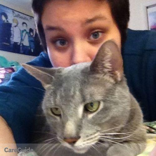 Pet Care Provider Daniel Rosetta's Profile Picture