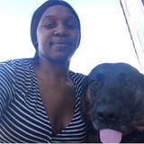 Interested In Pittsburg Dog Walker Jobs