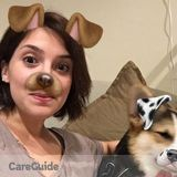 Dog Walker, Pet Sitter in Toronto