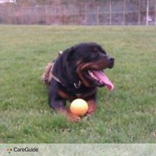 Pet Care Provider Amber Abbott's Profile Picture