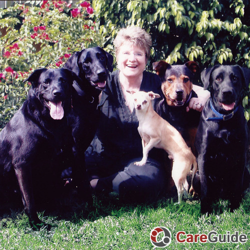 Pet Care Provider Karen Sarns's Profile Picture