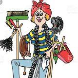 Wonderful Domestic Helper in Minneapolis, Minnesota