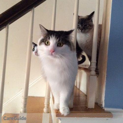 Pet Care Provider Katie Petley's Profile Picture