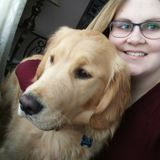 Caring dog owner looking to petsit your fur babies!