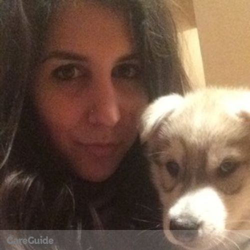 Pet Care Provider Cynthia Zakhem's Profile Picture