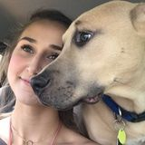 Animal loving girl who would love nothing more than to animal sit whenever needed!