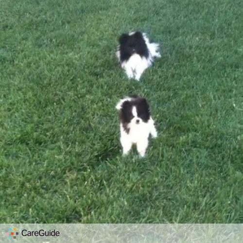 Pet Care Provider Laura Giovana's Profile Picture