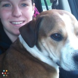 Dog Walker, Pet Sitter in Center Ossipee