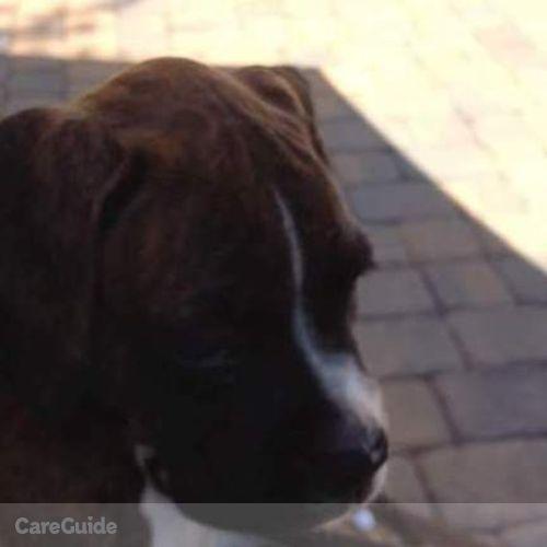 Pet Care Provider Shantiqua C's Profile Picture
