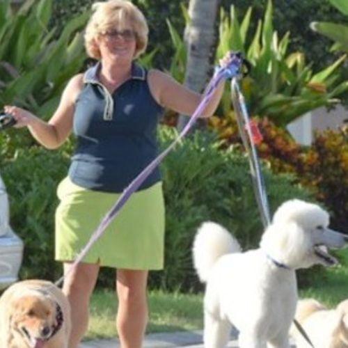 Looking for a Team Player in Vero Beach, FL - Dog Walker Job, Pet