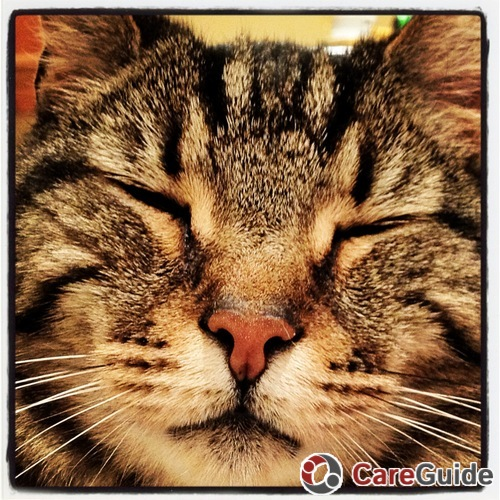 Pet Care Job Risa Goodman's Profile Picture