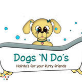 Pet Care Provider in Newmarket