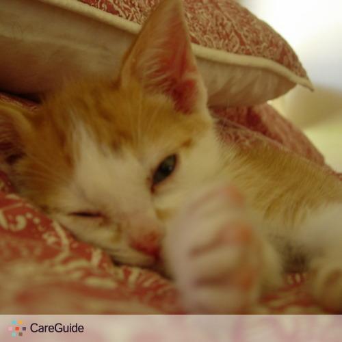 Pet Care Provider Jorge Rivero's Profile Picture
