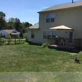Pet Sitter, Kennel in Amelia