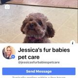 Professional pet sitter Owner of Jessicas fur babies pet care !Reliable and dependable and always here to help