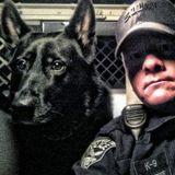 Police K9 Ranger needs a sitter