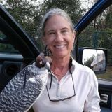 Trustworthy, professional park ranger, to care for your St. Pete home.