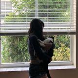 For Hire: Careful Pet Sitter in Davie, Florida