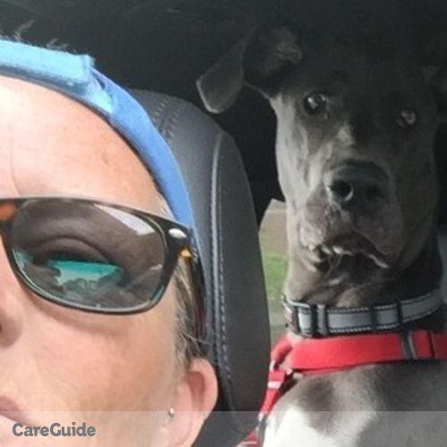 Pet Care Provider Deb K's Profile Picture