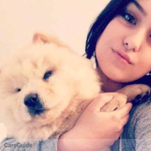 Pet Care Provider Mary Abeln's Profile Picture