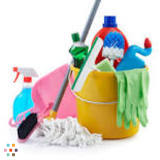 Housekeeper, House Sitter in Lugoff