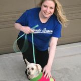 Experienced Pet Care Provider and Walker