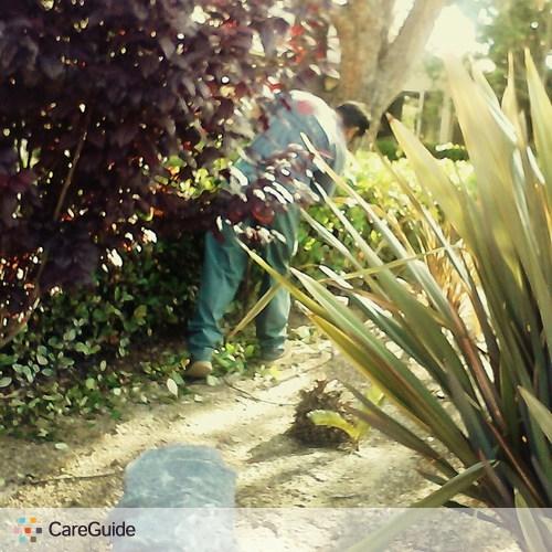Landscaper Provider Ciro Aparicio's Profile Picture