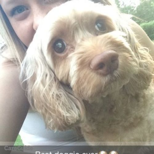 Pet Care Provider Morgan Erickson's Profile Picture