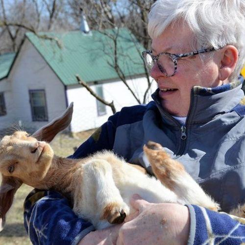 Pet Care Provider Kate Ridge's Profile Picture