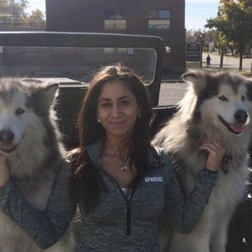 Pet Care Provider Reem Hashim's Profile Picture