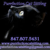 Pet Sitter in Schaumburg