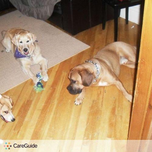 Pet Care Provider debra heather's Profile Picture
